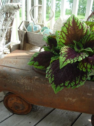 earthy hues and rust. FABULOUS!