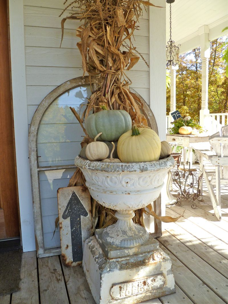 cornstalk white pumpkins