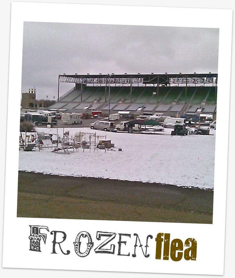 Frozen flea
