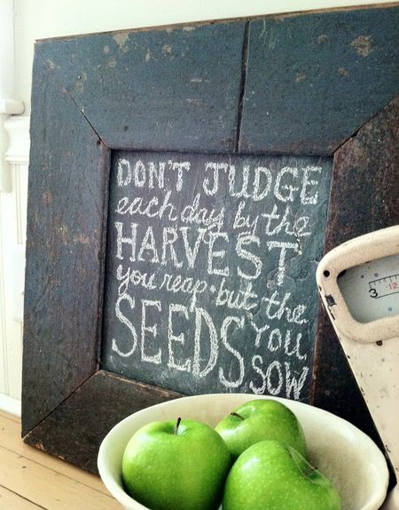 sow them seeds!