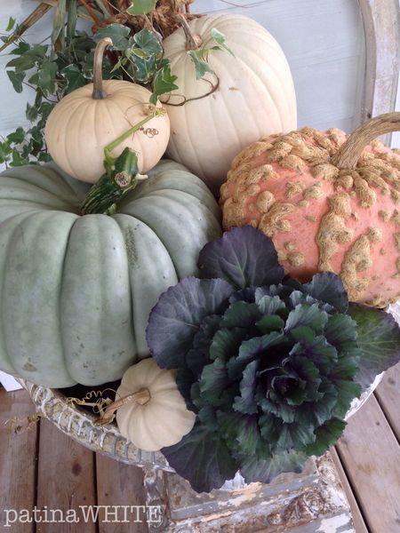 pretty in pastels...PUMPKINS!